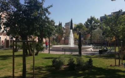 Matera: un ulivo nella villa comunale in memoria di Giovanni Palatucci, ex Questore di Fiume, Medaglia d'oro al valor civile